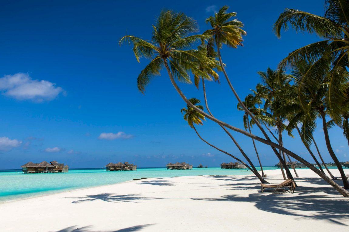 palm-beach.jpg