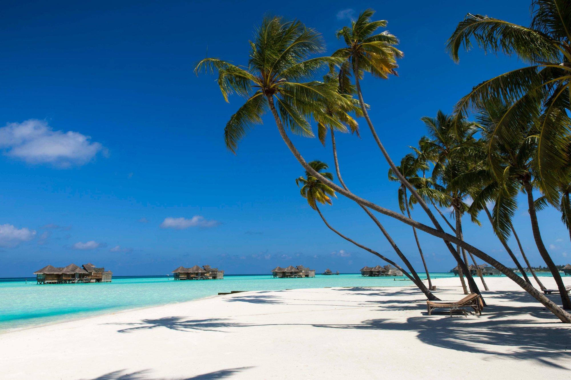 palm beach - Los mejores hoteles del mundo